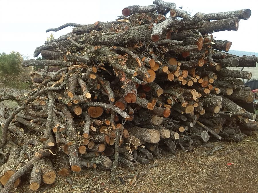 type of wood to use in barbecue